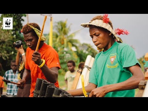 Bamboo Band at Women's Microfinance ceremony, Gizo, Solomon islands