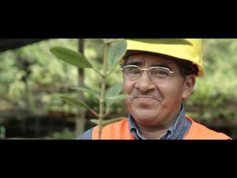 "Lundin Gold ""Responsible Mining"""