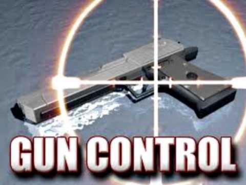 The New York Gun Control Laws Feat. NY Assemblyman Steve Katz