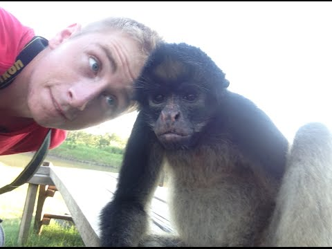 Life On A MONKEY ISLAND In The Amazon!