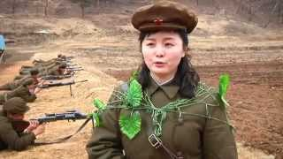 North Korea Fail Military