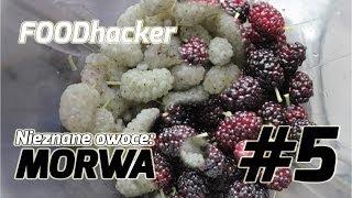 Nieznane owoce: MORWA - FOODhacker #5