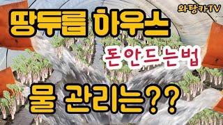 저희땅두릅하우스 물시설관리 공개 (A급정보)