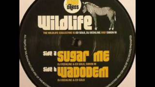 The Wildlife Collective - Sugar Me