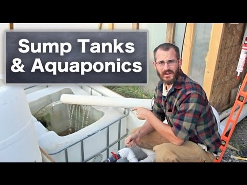 Using Sump Tanks with Aquaponics & Hydroponics