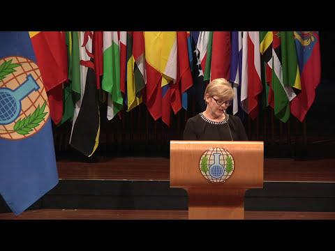 VERIFIN, winner of 2014 OPCW-The Hague Award: Acceptance speech by Paula Vanninen