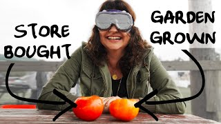 Can gardeners be fooled? Tomato Taste Test with Roots and Refuge