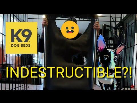 k9-ballistics-prototype-bed!-indestructible-challenge-accepted!!!