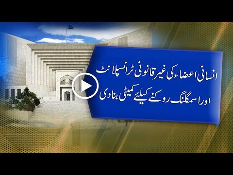 CapitalTV; SC forms committee to stop human organ's illegal transplants,trafficking