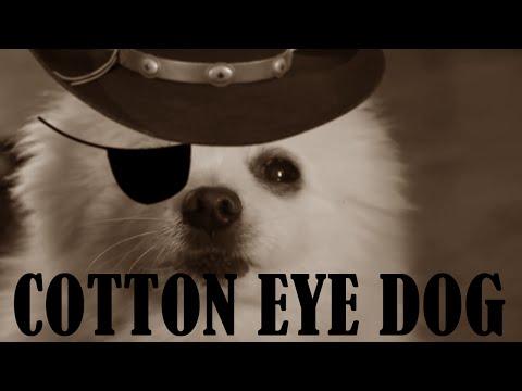 Gabe the Dog - Cotton Eye Dog (Rednex)