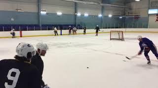 Puckface Hockey Training: Summer Pro Agility Day