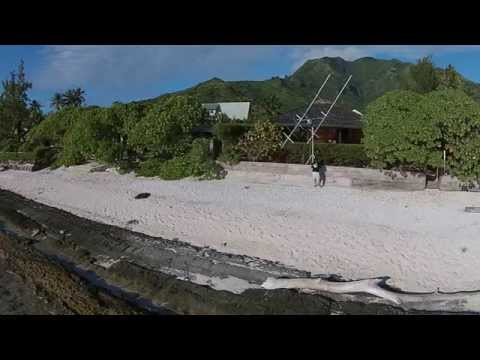 TX7EME array and op in Moorea