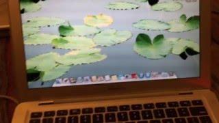 Writing a Serial Number to a Mac Logic Board
