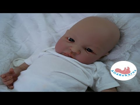 Come See Reborn Baby Dolls at Doll Show in Chandler, AZ - This Weekend - Meet All4Reborns