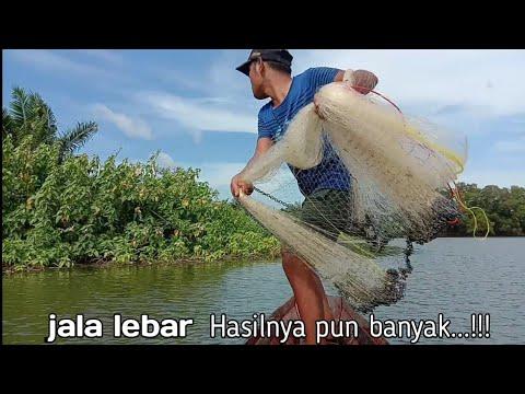 Download jala ikan di sungai,pakai perahu,,ternyata ikanya masih melimpah...!!!