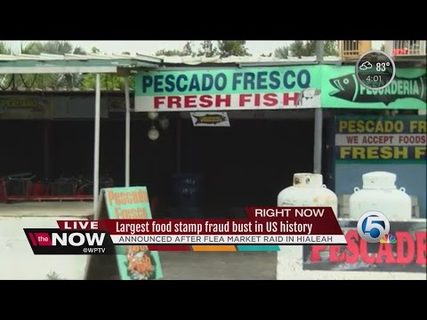 How To Report Food Stamp Fraud In Georgia Georgia Food Stamps Help