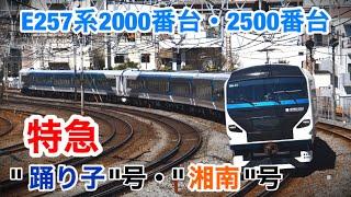 """E257系2000番台・2500番台 特急""""踊り子""""・""""湘南""""号"""