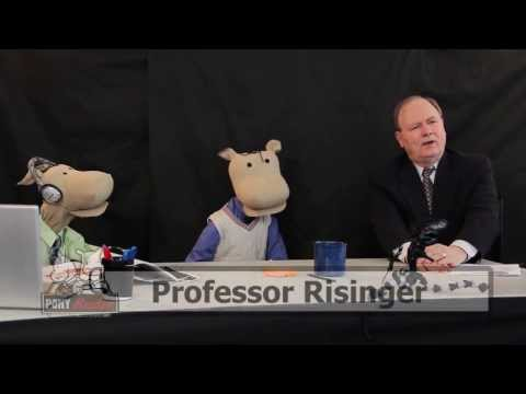 Why are there rules of evidence in the law?: Pony Radio