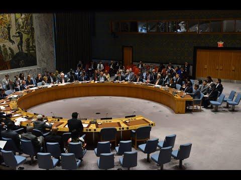 مجلس الأمن يمدّد لسنة العمل بآلية إيصال المساعدات إلى سوريا  - نشر قبل 2 ساعة