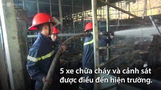 Cháy khu nuôi trồng sâm Ngọc Linh lớn nhất Đà Lạt | Tin tức VnExpre