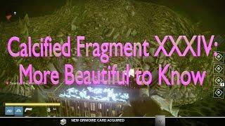 Calcified Fragment XXXIV, Destiny
