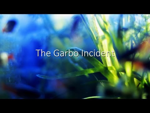 The Garbo Incident