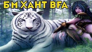 Гайд на Бм Ханта (Повелитель звірів) WoW BfA [8.0.1]