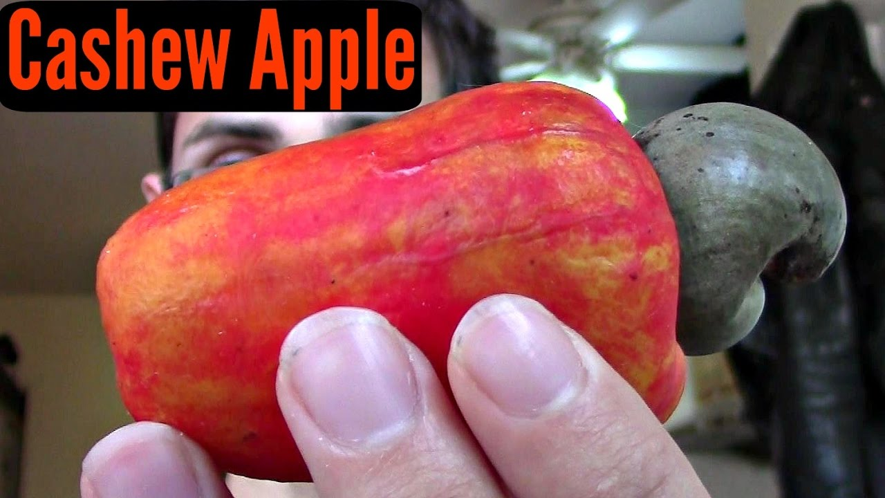 What does cashew apple look like?