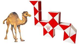 Smiggle Snake puzzle Camel. Rubik snake Animals. Rubik's Twist. Magic Rubik's snake 24. Autism toy