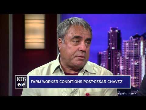 Mexican Growers Offer 15% In Baja Farm Strike