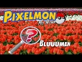 DIE ROTE BLUME - #79 Pixelmon Let's Play mit Wowa [DEUTSCH HD]