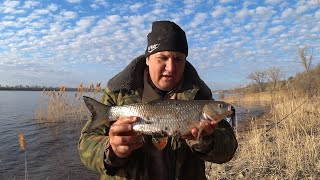Чистим Место для Рыбалки Ловля Голавля на Донку Закидушку Рыбалка на Реке