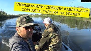ПОШЛИ НА СОМА ДОБЫЛИ КАБАНА Рыбалка 2020
