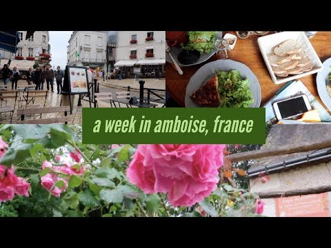 a week in amboise, france (pt.1): the travel diaries