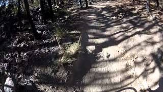 Bosque la Primavera en Bicicleta GoPro