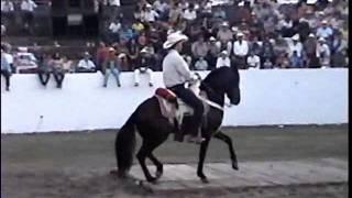 CABALLO JUAN COLORADO DE LA PLAZA DE TOROS VIVA AUTLAN