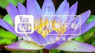 Audio Library 音樂庫 免費背景音樂下載 歌名: Water Lily 作者: The 126ers | Pop Music | 流行音樂