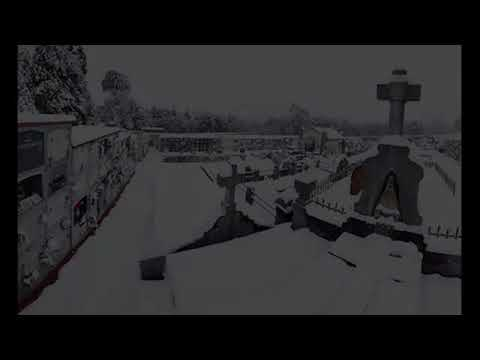 Leioa nevada