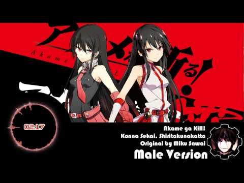 Akame ga Kill! ED 1 - Konna Sekai, Shiritakunakatta [Male Version]