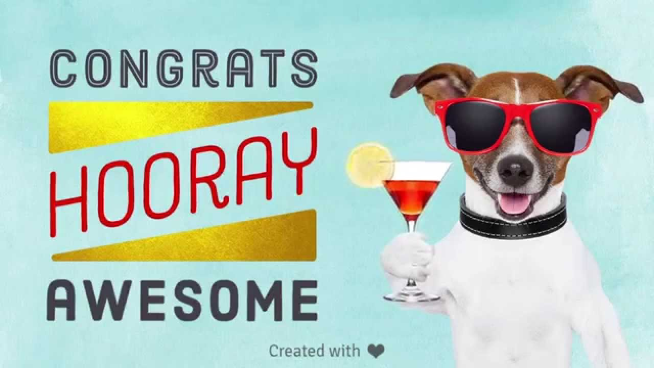 Image result for dog congratulations