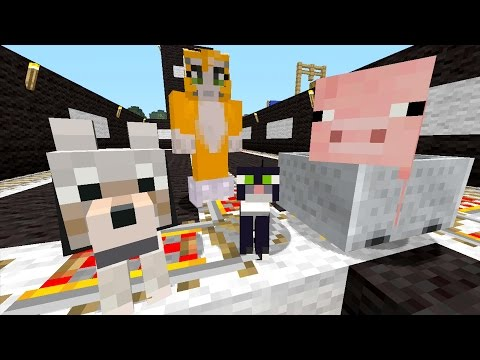 Minecraft Xbox - Pig Pong [335]