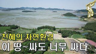 천혜의 자연환경 토지~싸도 너무 싸다~도로,전기OK~9…