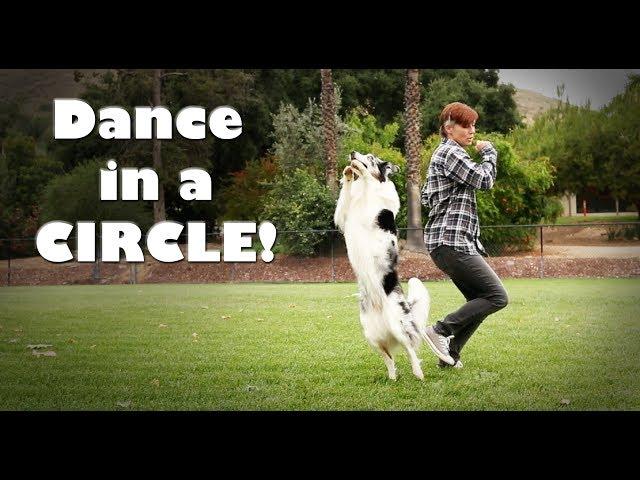 Dance in a Circle - Dog tricks tutorial