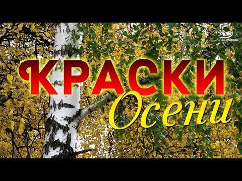 🍁 КРАСКИ ОСЕНИ 🌿 Прогулка по осеннему парку под красивую воздушную МУЗЫКУ... Просто замечательно!