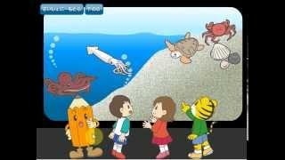 【しまじろうの幼児向け学習ゲーム】水族館で楽しくひらがなの勉強【shi...