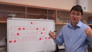 Анализ родословных. Урок 7. Задача 7.5 (быстрый разбор в конце видео)