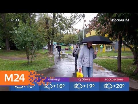 Какой будет погода в августе - Москва 24