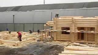Строительство деревянных домов и бань ручной рубки(Вид на строительную площадку компании
