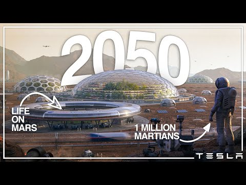 What Life In Elon Musk's Mars Colony Will Be Like