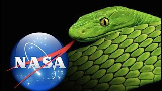 YOU WON'T BELIEVE WHAT NASA IS DOING NOW! (SCIENCE TECHNOLOGY)